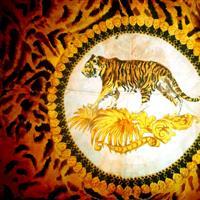 """Association - """"Génération Tigres"""