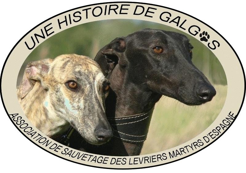 """Association - """"Une Histoire De Galgos"""""""