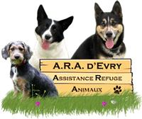 Association Assistance Refuge Animaux