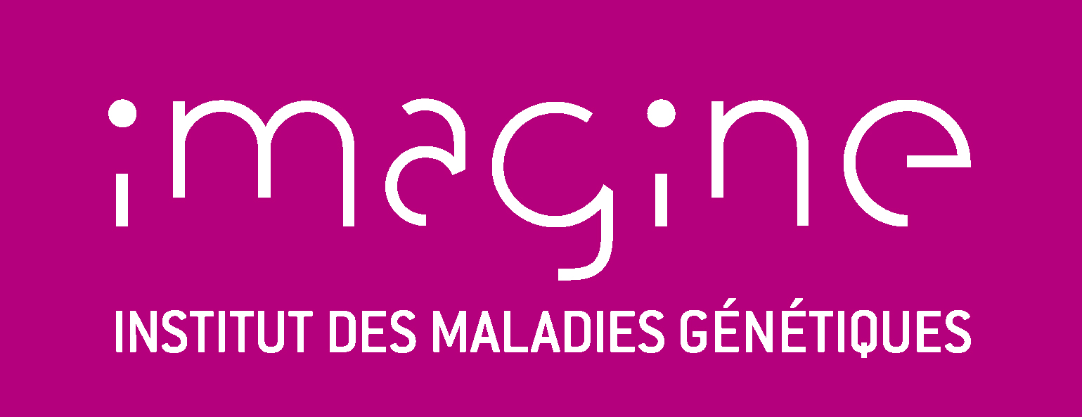 Association - Imagine - Institut des maladies génétiques