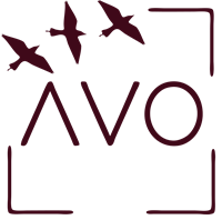 Association A vol d'oiseau AVO