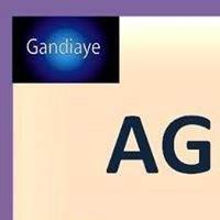 Association - AGD DIASPORA GANDIAYE