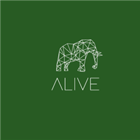 Association - Alive