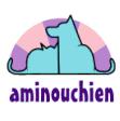 Association - Aminouchien
