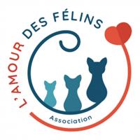 Association Amour des Félins