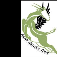 Association - Angel Gazelles Team