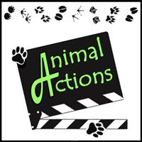 Association ANIMAL ACTIONS