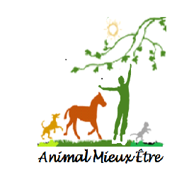 Association - Animal Mieux Etre
