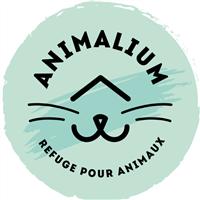 Association - Animalium