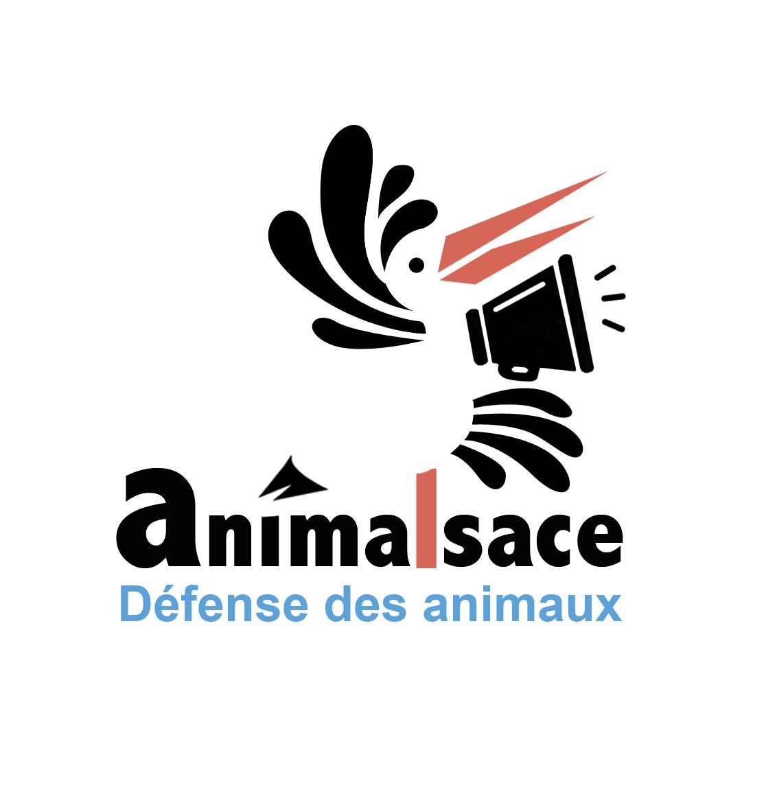 Association - Animalsace