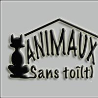 Association - Animaux Sans Toî(t)