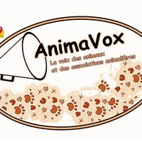 Association - AnimaVox