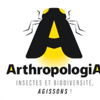 Association - ARTHROPOLOGIA