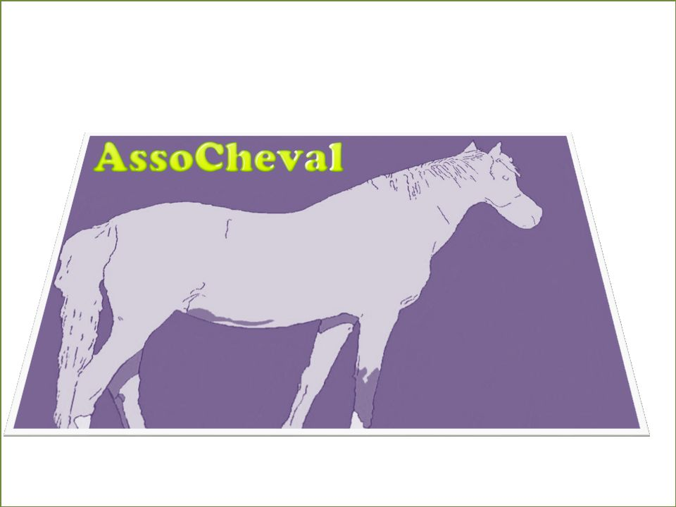 Association - ASSOCHEVAL