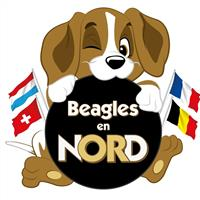 Association - Association BEAGLES EN NORD