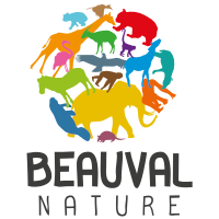Association - Association Beauval Nature