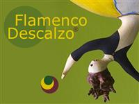 Association Association Flamenco Descalzo