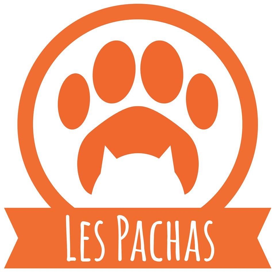Association - Association Les Pachas