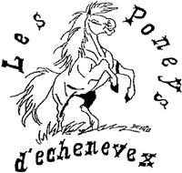Association Association les Poneys d'Echenevex
