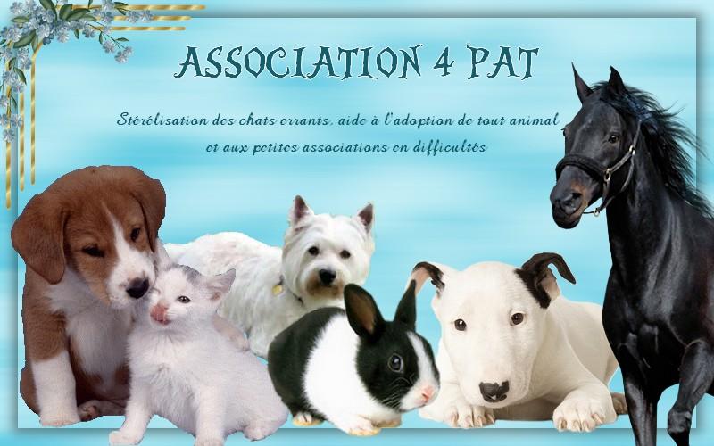 Association - ASSOCIATION 4 PAT
