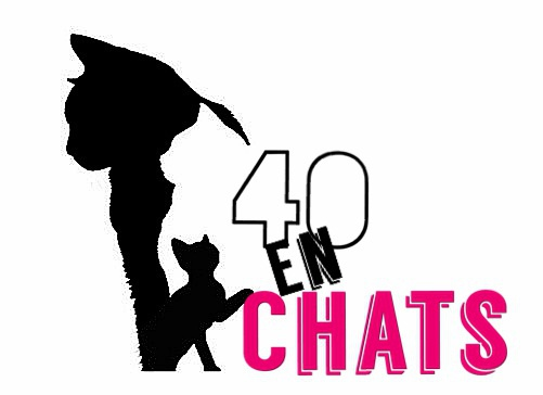 Association - Association 40 En Chats