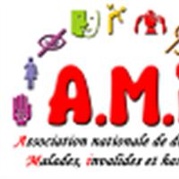 Association - Association A.M.i.