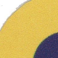 Association - Association Cécilienne du Palet