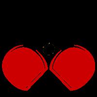 Association - Association Champigneullaise de tennis de Table