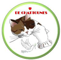 Association Association Coeur de Chattounes