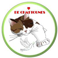Association - Association Coeur de Chattounes