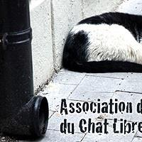 Association - Association De Défense Du Chat Libre Dijonnais