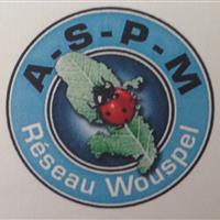 Association - ASSOCIATION DE SOINS PALLIATIFS DE LA MARTINIQUE-RESEAU WOUSPEL