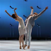 Association - Association des Amis du Malandain Ballet Biarritz