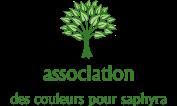 Association - association des couleur pour saphyra