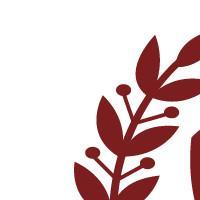 Association - Association Divertissements Royaux