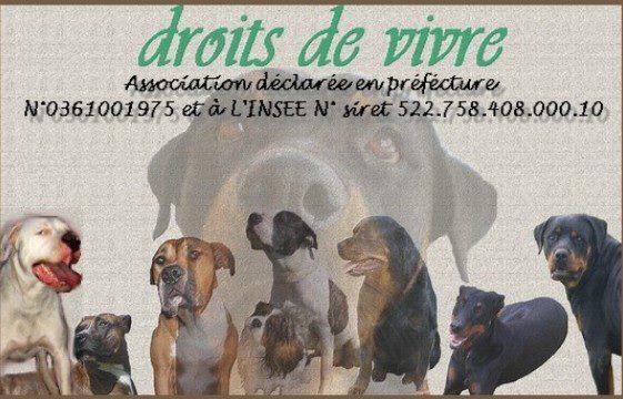 Association - Association DROITS DE VIVRE
