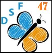 Association - Association Dys'Solutions France 47 (DSF47)