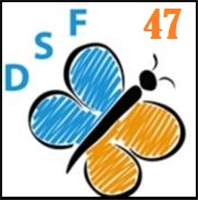 Association Association Dys'Solutions France 47 (DSF47)