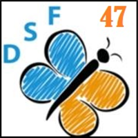 Association - Association Dys'Solutions France 47 (DSF47)