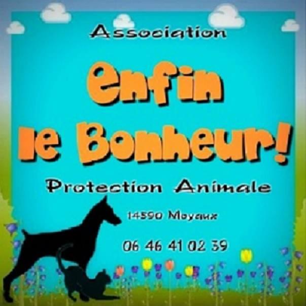 Association - ASSOCIATION ENFIN LE BONHEUR