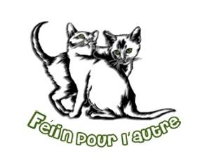 Association - ASSOCIATION FELIN POUR L'AUTRE