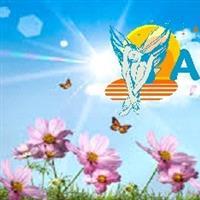 Association - Association Française du Lupus