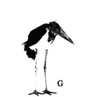 Association - association G