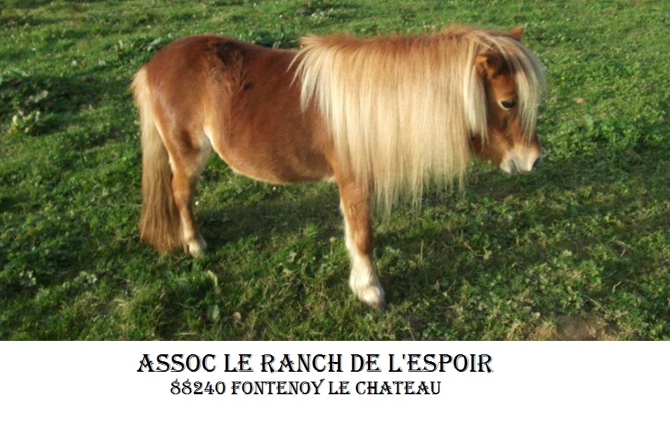 Association - Association Le Ranch de l'Espoir