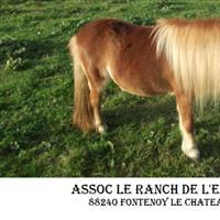 Association - Association Le Ranch de l'Espoir