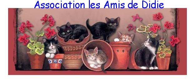 Association - Association les Amis de Didie