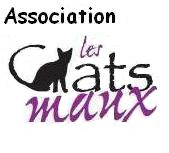 Association - ASSOCIATION LES CHATS MAUX