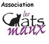 Association - ASSOCIATION LES CHATS MAUX