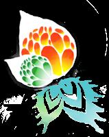 Association - Association Microphtalmie France