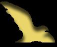 Association - Association Nationale des Enseignants et Partenaires Culturels des Classes Cinéma et Audiovisuel